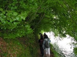 2009-05-31 08-38-15 Switzerland Schaffhausen Laufen_01
